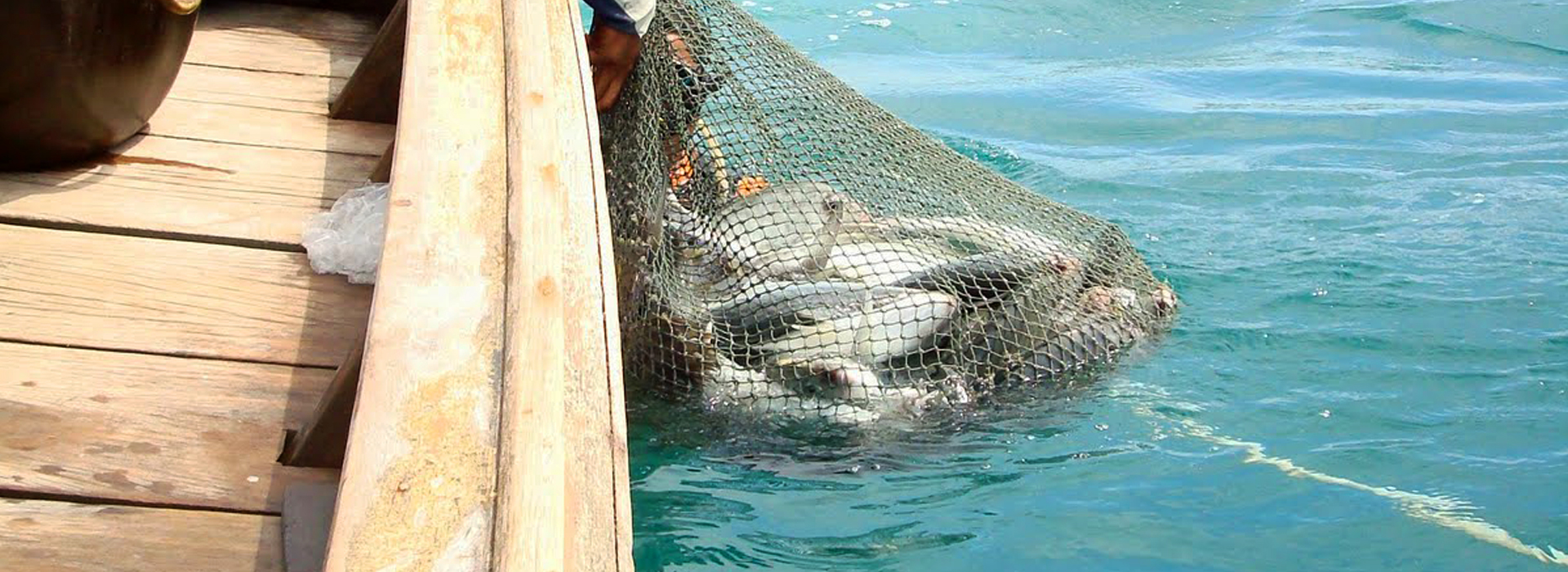 <p>A day out with the Sea Gypsies on a long tail boat, watch them dive to their traps, try some line fishing and finish with a fish BBQ on some secluded beach.</p>